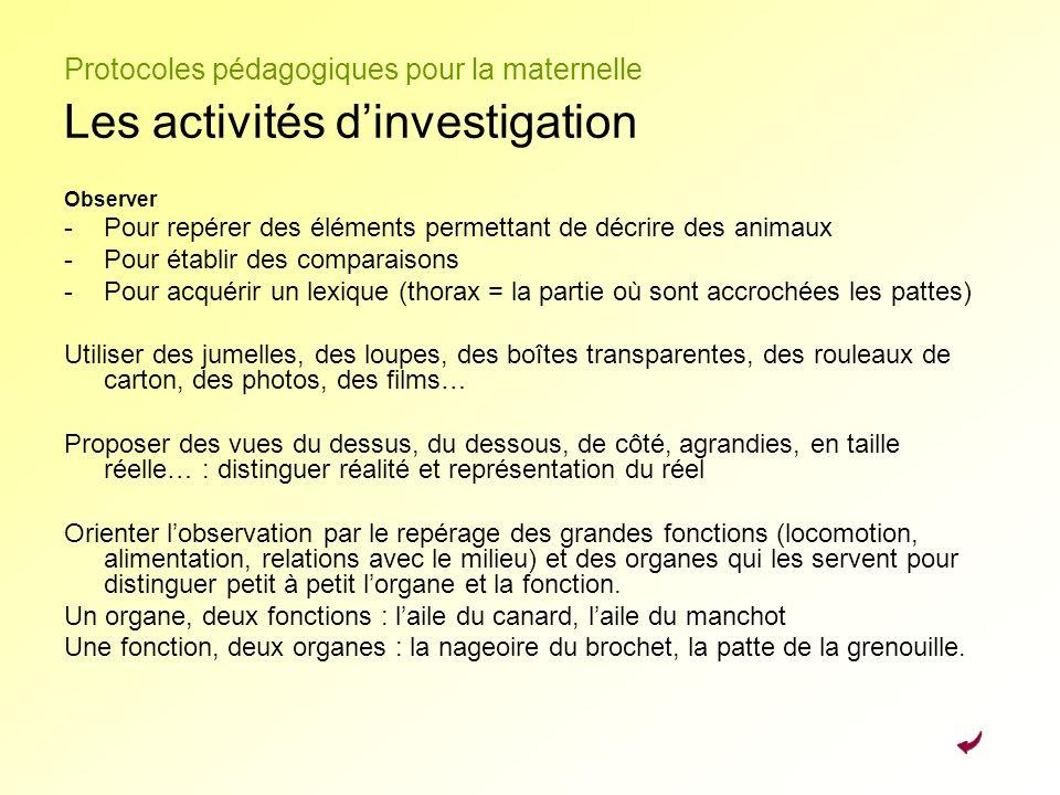 Protocoles pédagogiques pour la maternelle Les activités dinvestigation Observer -Pour repérer des éléments permettant de décrire des animaux -Pour ét