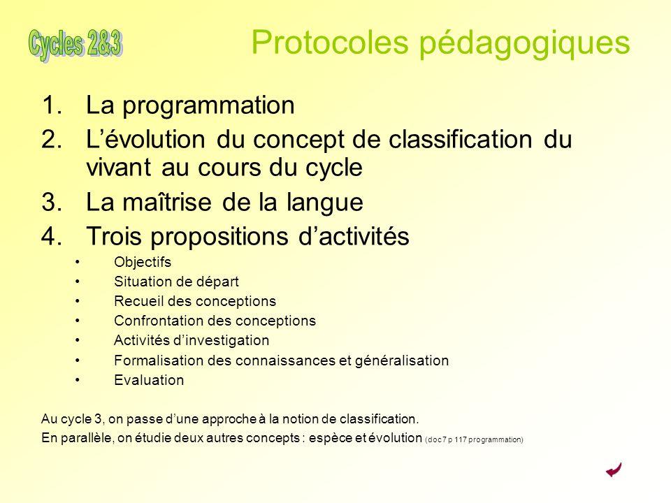 Protocoles pédagogiques 1.La programmation 2.Lévolution du concept de classification du vivant au cours du cycle 3.La maîtrise de la langue 4.Trois pr