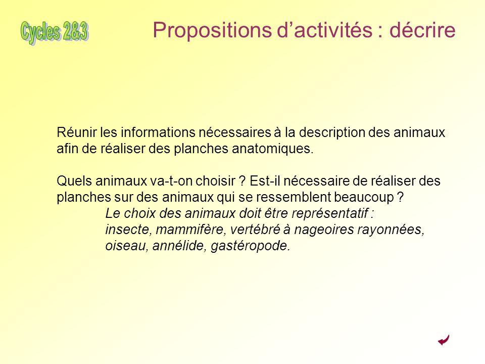 Propositions dactivités : décrire Réunir les informations nécessaires à la description des animaux afin de réaliser des planches anatomiques. Quels an