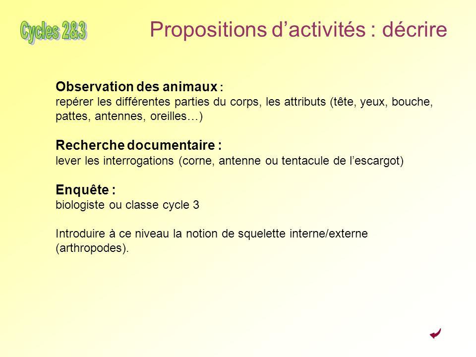 Propositions dactivités : décrire Observation des animaux : repérer les différentes parties du corps, les attributs (tête, yeux, bouche, pattes, anten