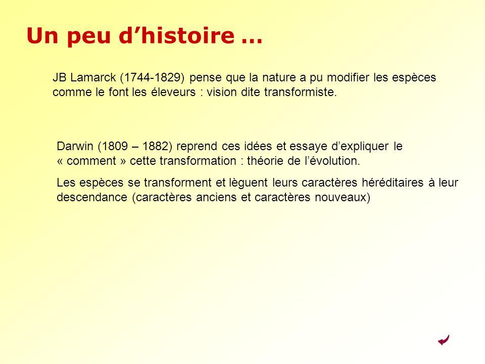 Un peu dhistoire … JB Lamarck (1744-1829) pense que la nature a pu modifier les espèces comme le font les éleveurs : vision dite transformiste. Darwin