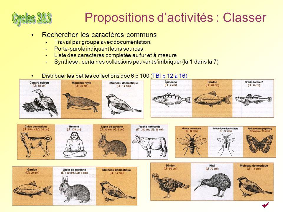 Propositions dactivités : Classer Rechercher les caractères communs -Travail par groupe avec documentation. -Porte-parole indiquent leurs sources. -Li