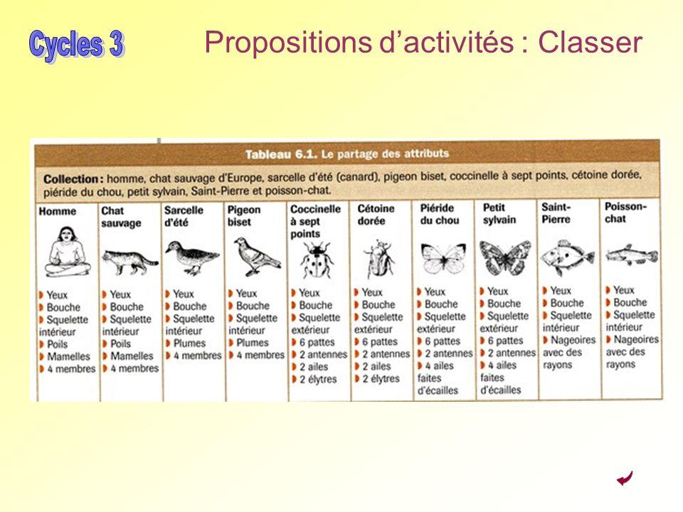 Propositions dactivités : Classer