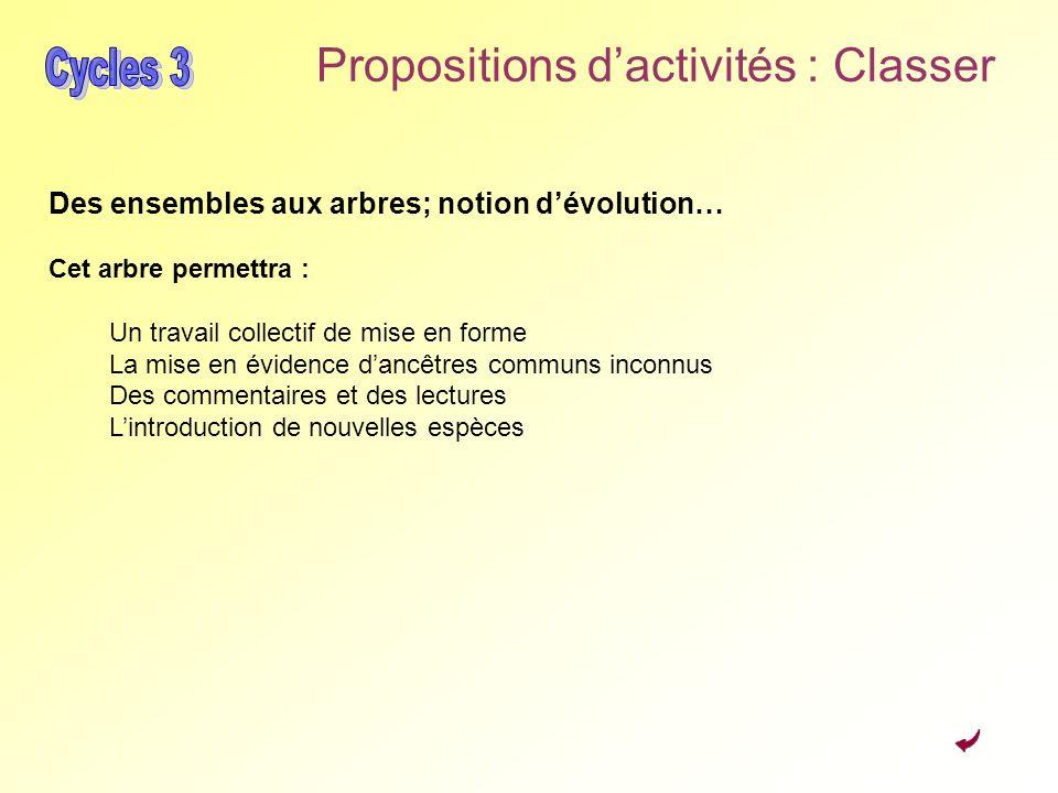 Propositions dactivités : Classer Des ensembles aux arbres; notion dévolution… Cet arbre permettra : Un travail collectif de mise en forme La mise en