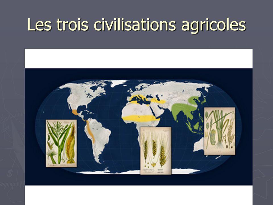 Les trois civilisations agricoles