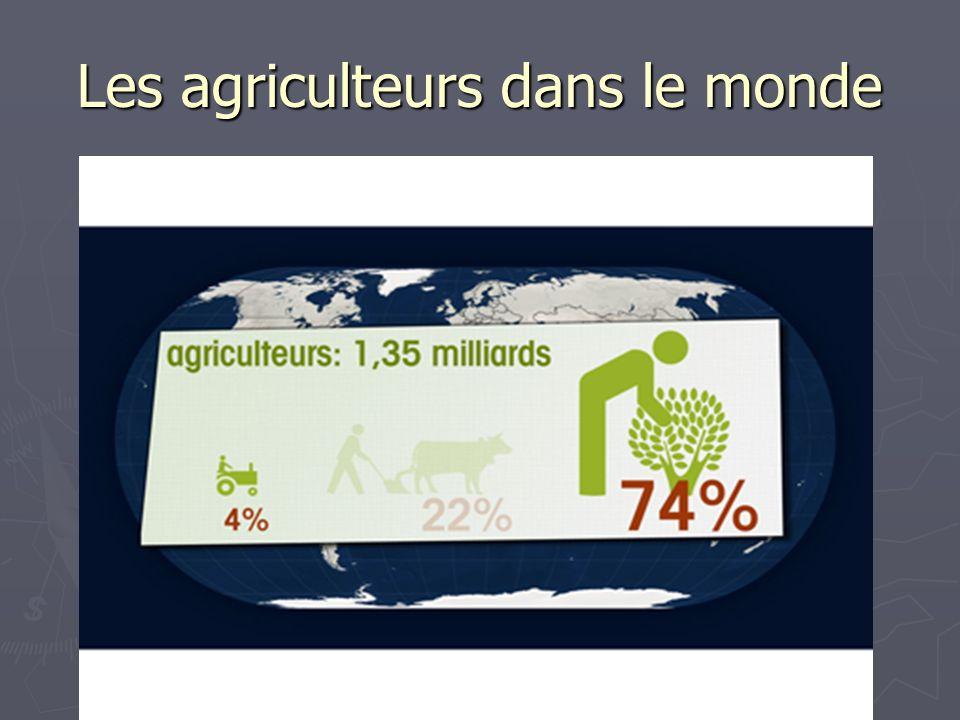 Les agriculteurs dans le monde