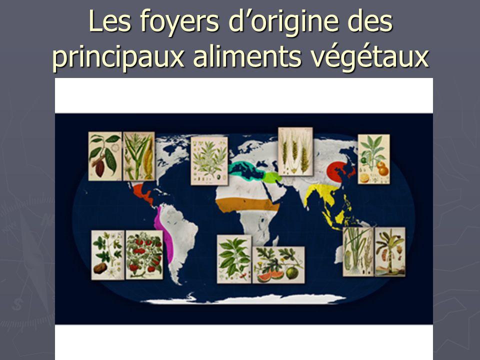 Les foyers dorigine des principaux aliments végétaux