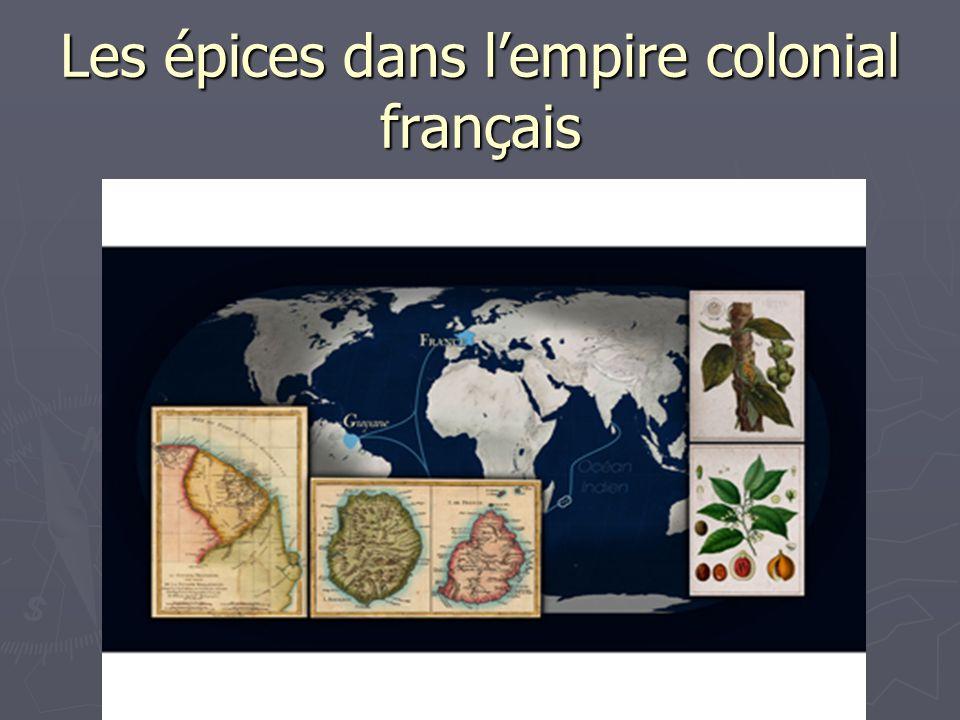 Les épices dans lempire colonial français