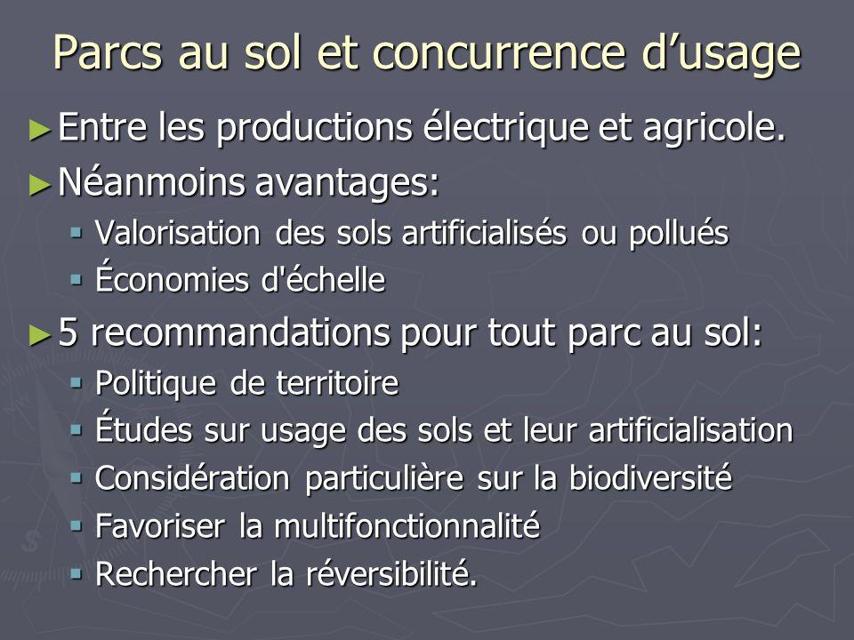 Parcs au sol et concurrence dusage Entre les productions électrique et agricole. Entre les productions électrique et agricole. Néanmoins avantages: Né