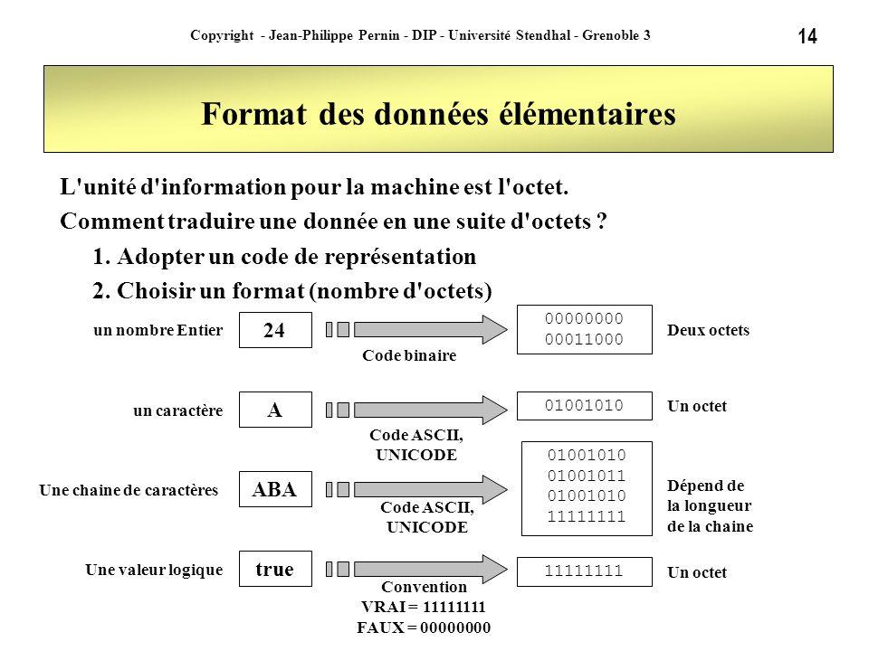 14 Copyright - Jean-Philippe Pernin - DIP - Université Stendhal - Grenoble 3 Format des données élémentaires L'unité d'information pour la machine est