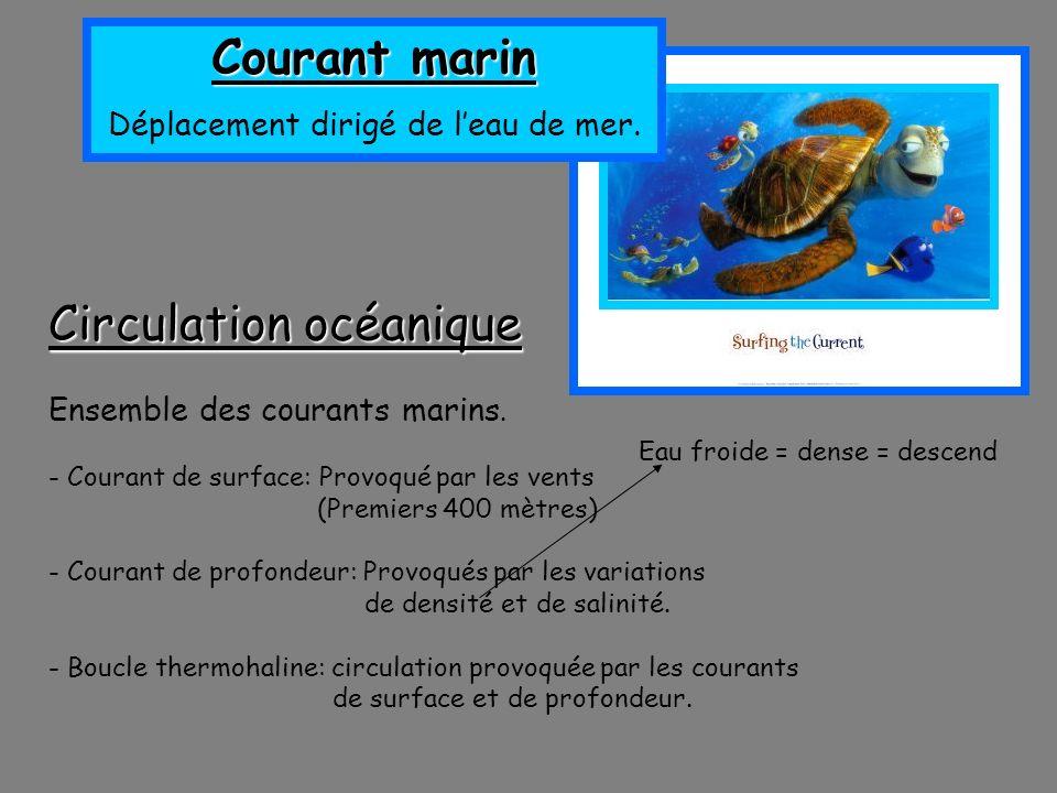 Circulation océanique Ensemble des courants marins. - Courant de surface: Provoqué par les vents (Premiers 400 mètres) - Courant de profondeur: Provoq