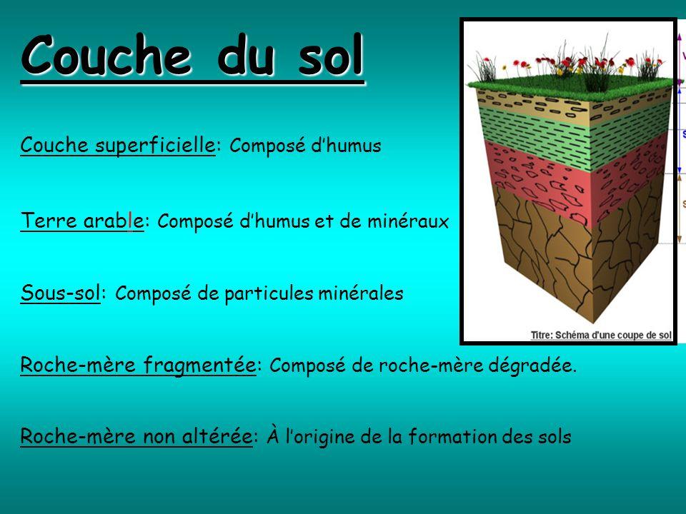 Couche du sol Couche superficielle: Composé dhumus Terre arable: Composé dhumus et de minéraux Sous-sol: Composé de particules minérales Roche-mère fr