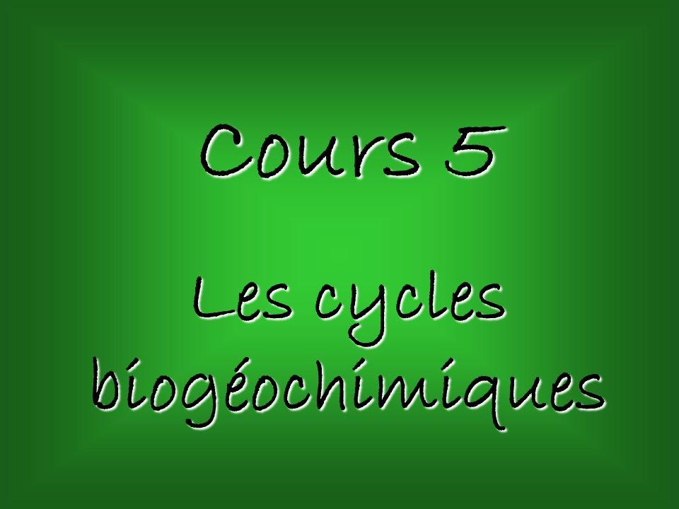 Cours 5 Les cycles biogéochimiques
