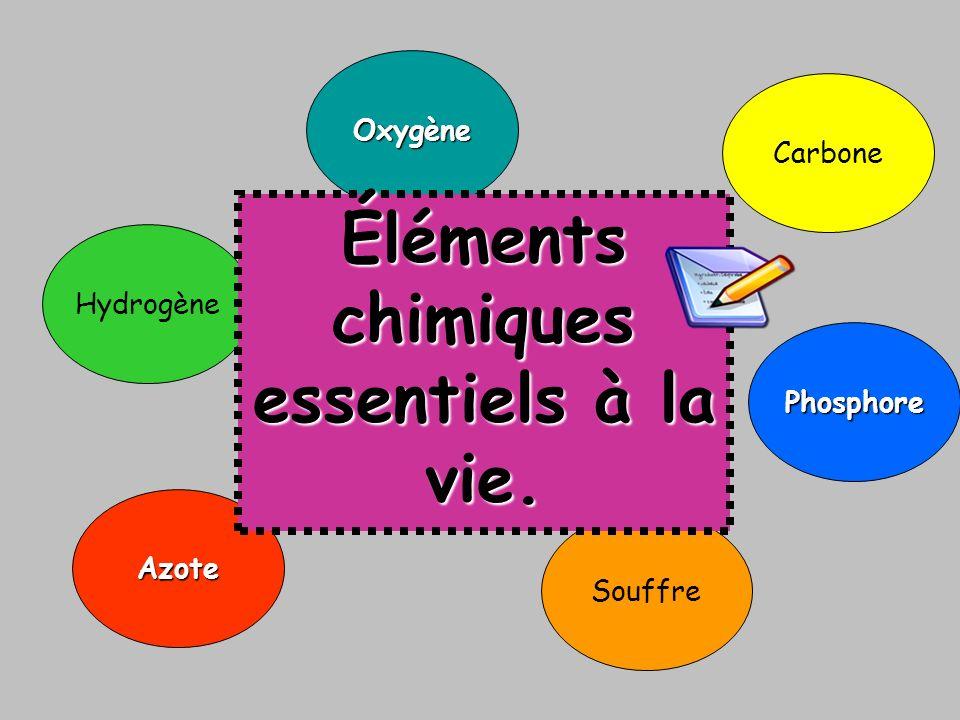 Certains éléments chimiques assurent ces trois besoins vitaux. Carbone Souffre Phosphore Azote Hydrogène Oxygène Éléments chimiques essentiels à la vi