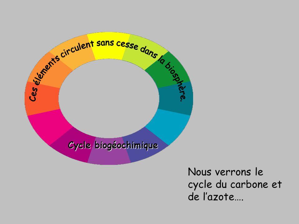 Cycle biogéochimique Nous verrons le cycle du carbone et de lazote….