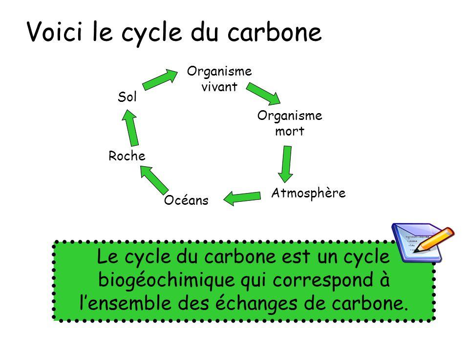 Voici le cycle du carbone Organisme vivant Organisme mort Atmosphère Océans Roche Sol Le cycle du carbone est un cycle biogéochimique qui correspond à