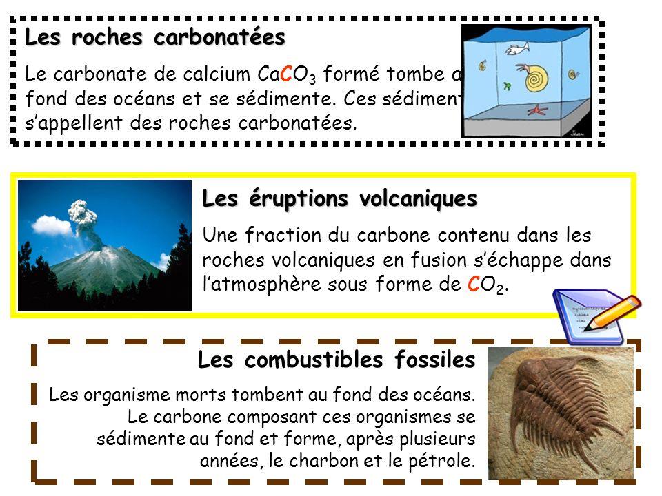 Les roches carbonatées Le carbonate de calcium CaCO 3 formé tombe au fond des océans et se sédimente. Ces sédiments sappellent des roches carbonatées.