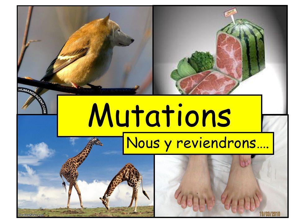 Mutations Nous y reviendrons….