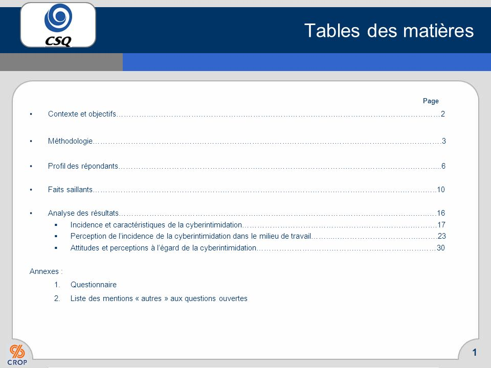 Rapport présenté à la Mars 2008 Sondage sur le phénomène de la cyberintimidation en milieu scolaire