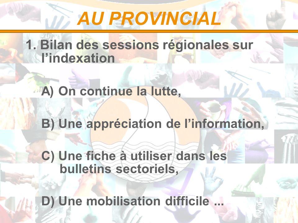 AU PROVINCIAL 1. Bilan des sessions régionales sur lindexation A) On continue la lutte, B) Une appréciation de linformation, C) Une fiche à utiliser d