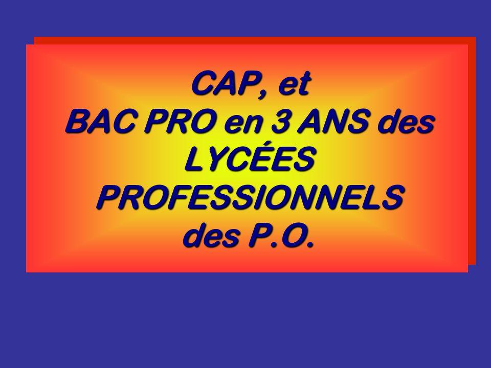 CAP, et BAC PRO en 3 ANS des LYCÉES PROFESSIONNELS des P.O.