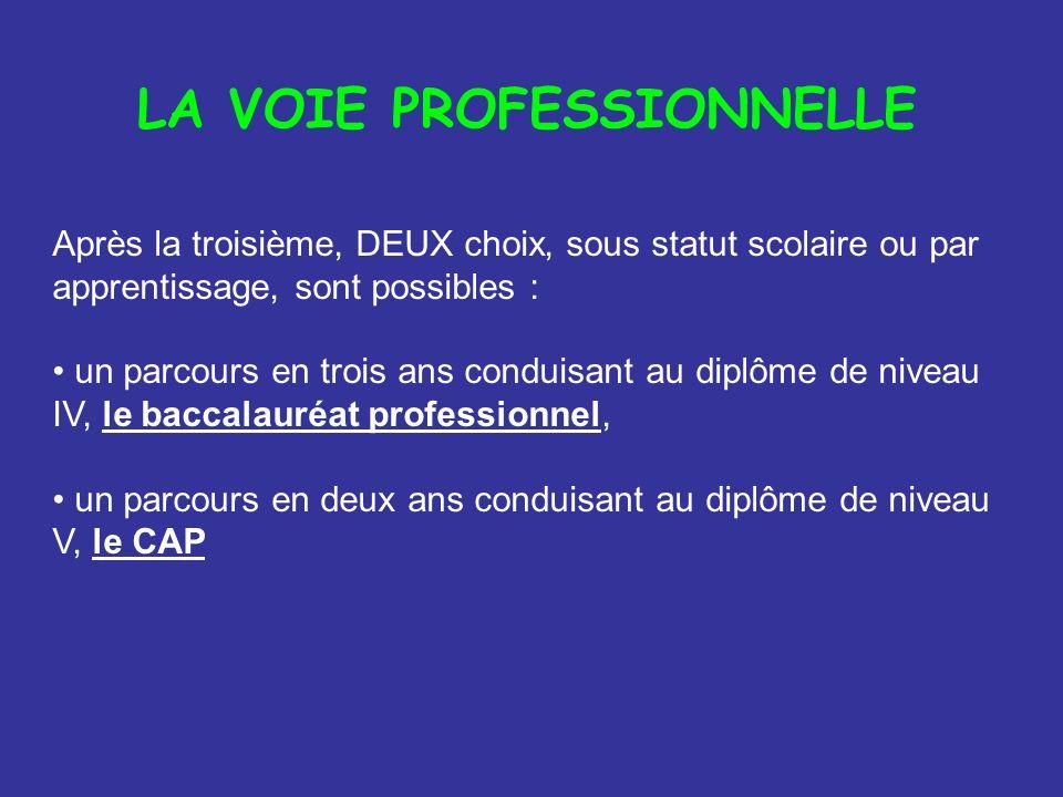 Après la troisième, DEUX choix, sous statut scolaire ou par apprentissage, sont possibles : un parcours en trois ans conduisant au diplôme de niveau I