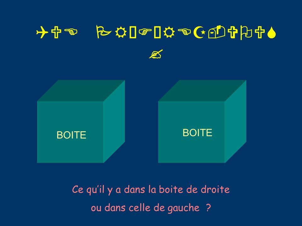 QUE PRÉFÉREZ-VOUS ? BOITE Ce quil y a dans la boite de droite ou dans celle de gauche ?