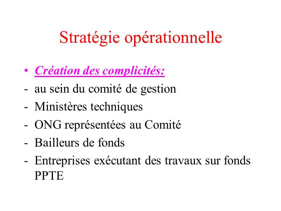 Stratégie opérationnelle Création des complicités: -au sein du comité de gestion -Ministères techniques -ONG représentées au Comité -Bailleurs de fond