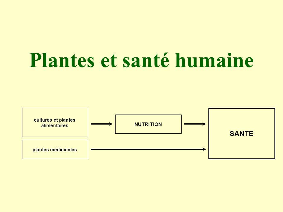 Plantes et santé humaine cultures et plantes alimentaires plantes médicinales NUTRITION SANTE