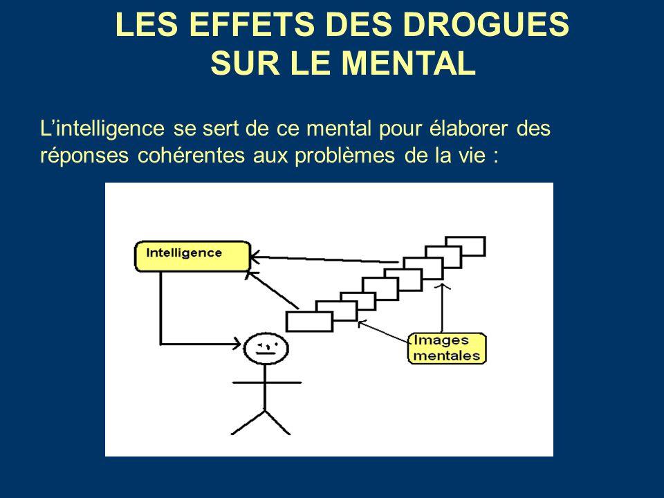 Lintelligence se sert de ce mental pour élaborer des réponses cohérentes aux problèmes de la vie : LES EFFETS DES DROGUES SUR LE MENTAL