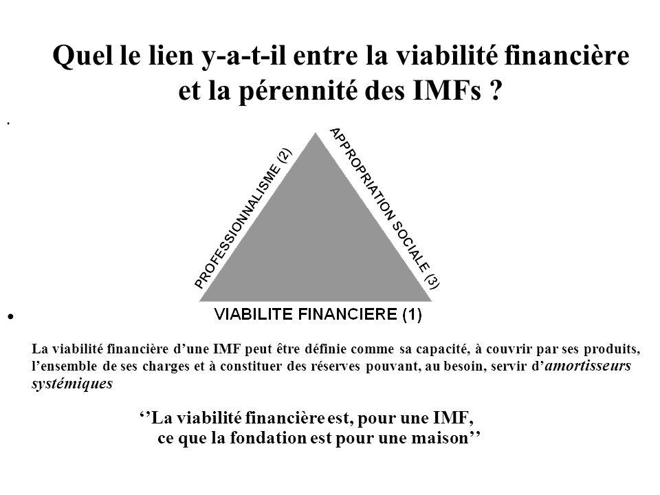 Quel le lien y-a-t-il entre la viabilité financière et la pérennité des IMFs .