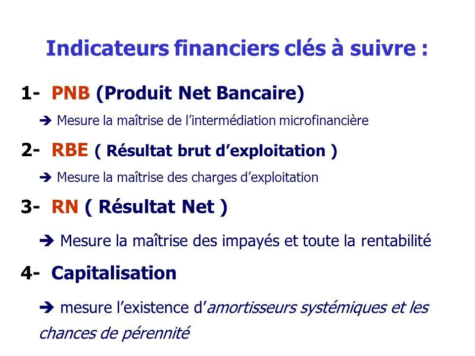 Indicateurs financiers clés à suivre : 1- PNB (Produit Net Bancaire) Mesure la maîtrise de lintermédiation microfinancière 2- RBE ( Résultat brut dexploitation ) Mesure la maîtrise des charges dexploitation 3- RN ( Résultat Net ) Mesure la maîtrise des impayés et toute la rentabilité 4- Capitalisation mesure lexistence damortisseurs systémiques et les chances de pérennité