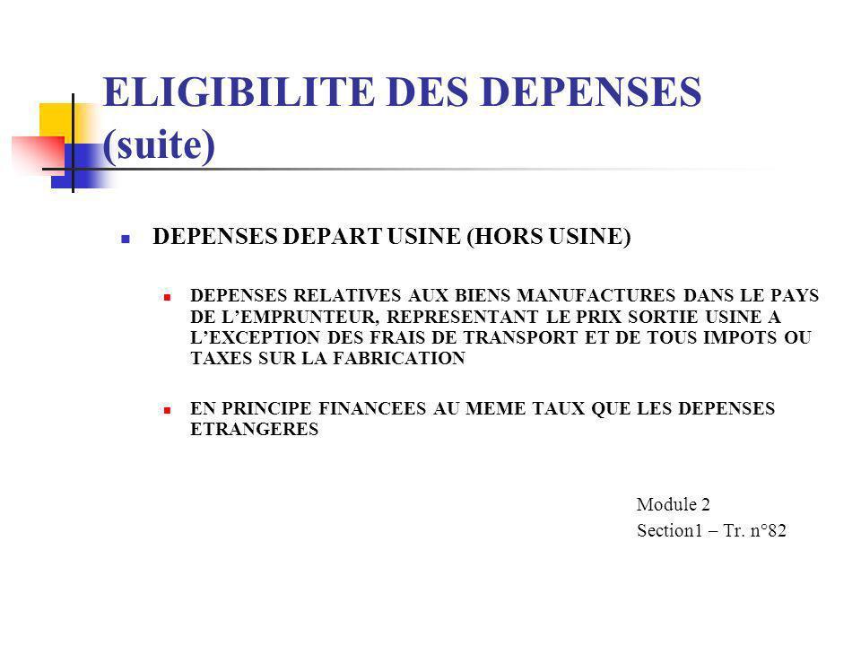 ELIGIBILITE DES DEPENSES (suite) LES DEPENSES LOCALES LES DEPENSES DANS LA MONNAIE DE LEMPRUNTEUR (OU DU GERANT) OU DES DEPENSES POUR DES PRODUITS ET