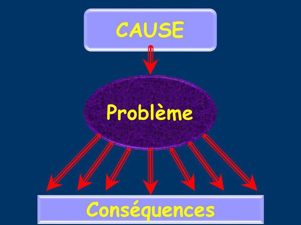 Problème Conséquences CAUSE