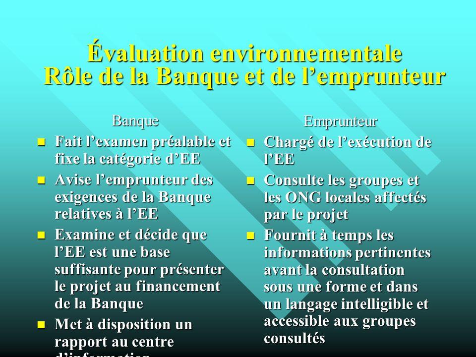 Évaluation environnementale Rôle de la Banque et de lemprunteur Banque Fait lexamen préalable et fixe la catégorie dEE Fait lexamen préalable et fixe