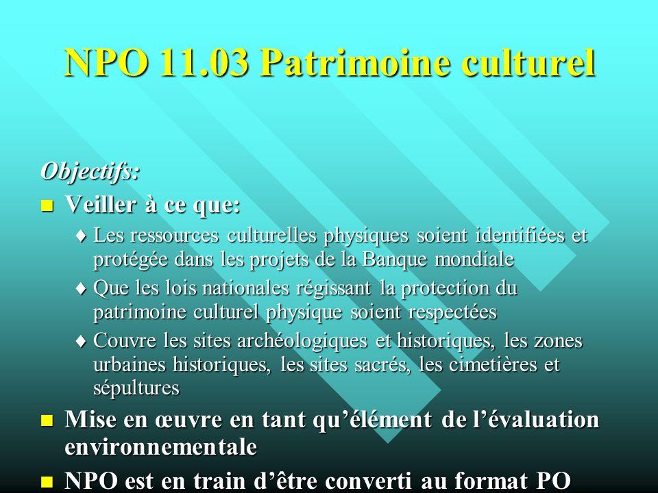 NPO 11.03 Patrimoine culturel Objectifs: Veiller à ce que: Veiller à ce que: Les ressources culturelles physiques soient identifiées et protégée dans