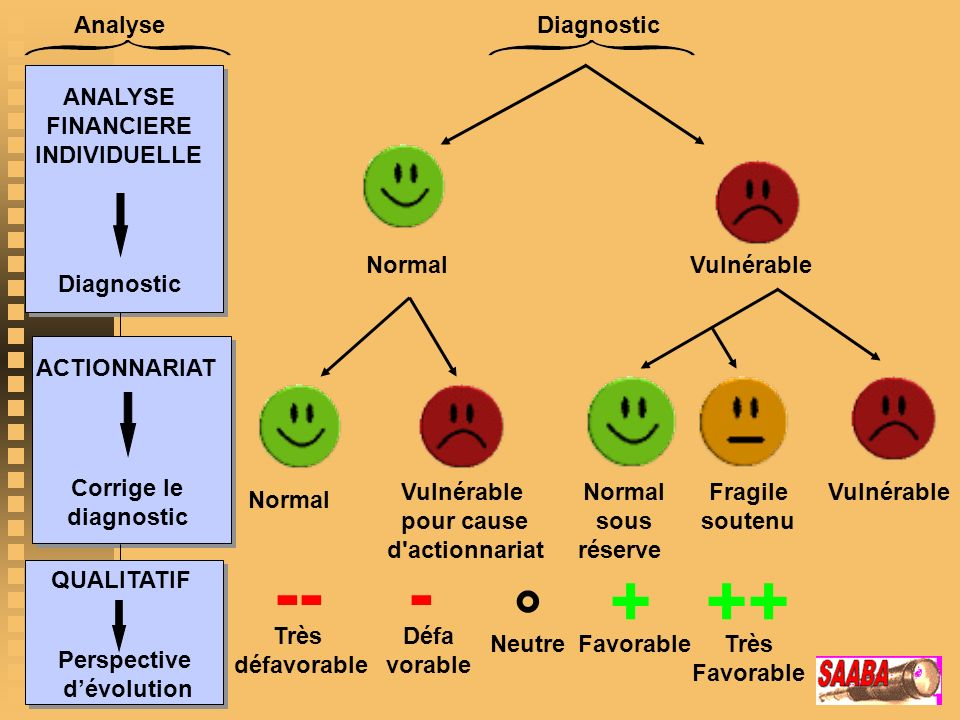AnalyseDiagnostic NormalVulnérable Normal Vulnérable pour cause d actionnariat VulnérableFragile soutenu Normal sous réserve ANALYSE FINANCIERE INDIVIDUELLE Diagnostic ACTIONNARIAT Corrige le diagnostic QUALITATIF Perspective dévolution --- ° +++ Très défavorable Défa vorable Très Favorable Neutre