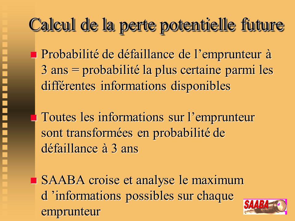 Calcul de la perte potentielle future Calcul de la perte potentielle future n Probabilité de défaillance de lemprunteur à 3 ans = probabilité la plus