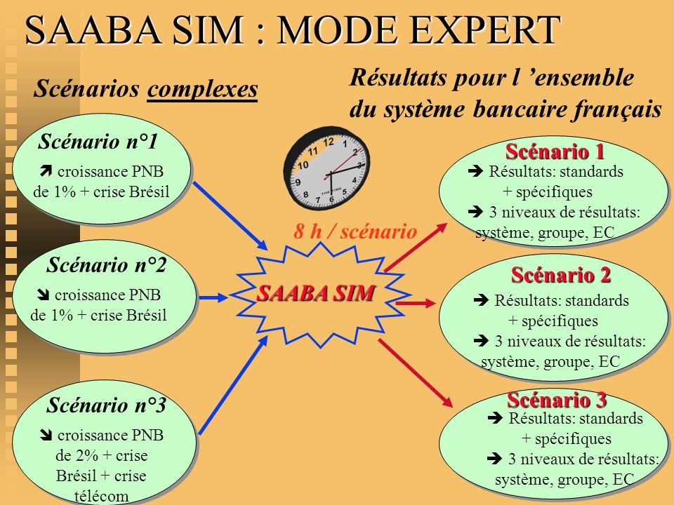 SAABA SIM : MODE EXPERT Résultats: standards + spécifiques 3 niveaux de résultats: système, groupe, EC Scénario 1 Scénario n°2 croissance PNB de 1% +