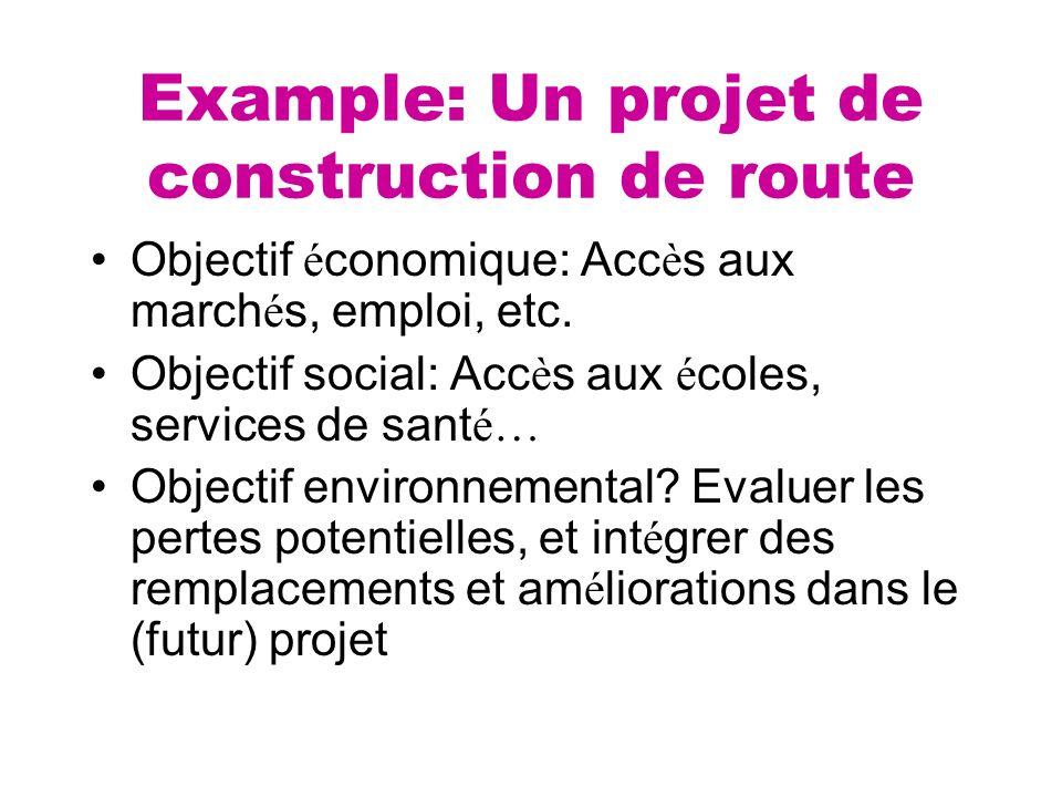 Example: Un projet de construction de route Objectif é conomique: Acc è s aux march é s, emploi, etc. Objectif social: Acc è s aux é coles, services d