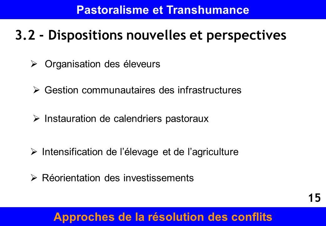 3.2 - Dispositions nouvelles et perspectives Gestion communautaires des infrastructures Instauration de calendriers pastoraux Intensification de lélev