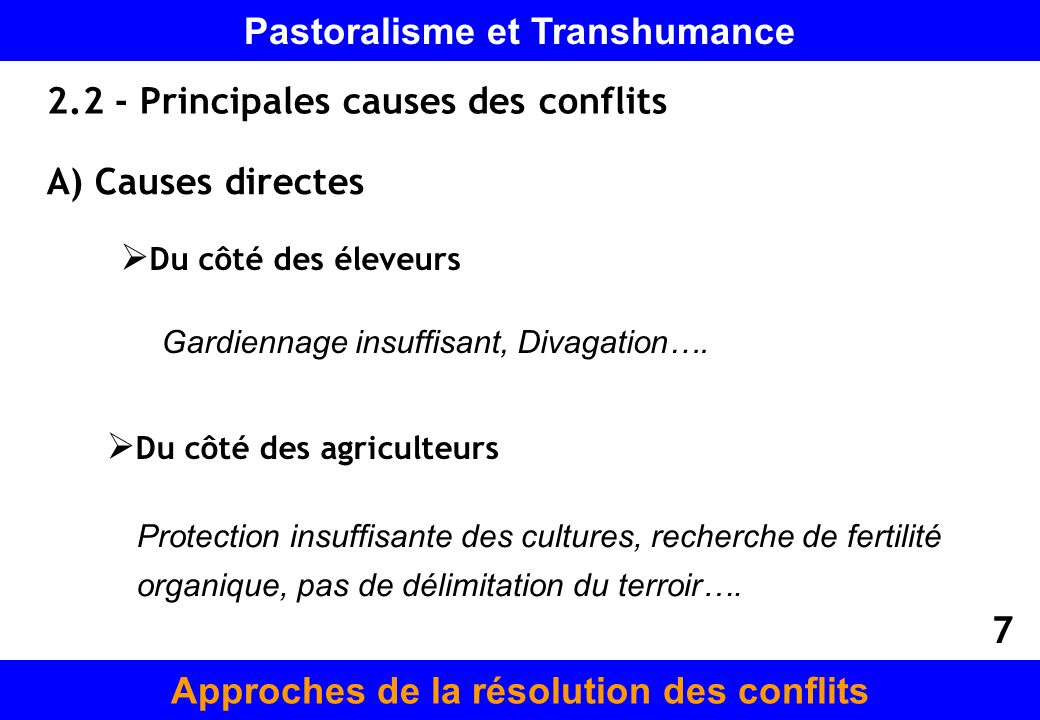 2.2 - Principales causes des conflits A) Causes directes Du côté des éleveurs Du côté des agriculteurs Gardiennage insuffisant, Divagation…. Protectio