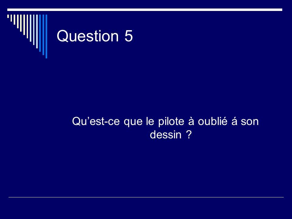 Question 5 Quest-ce que le pilote à oublié á son dessin ?