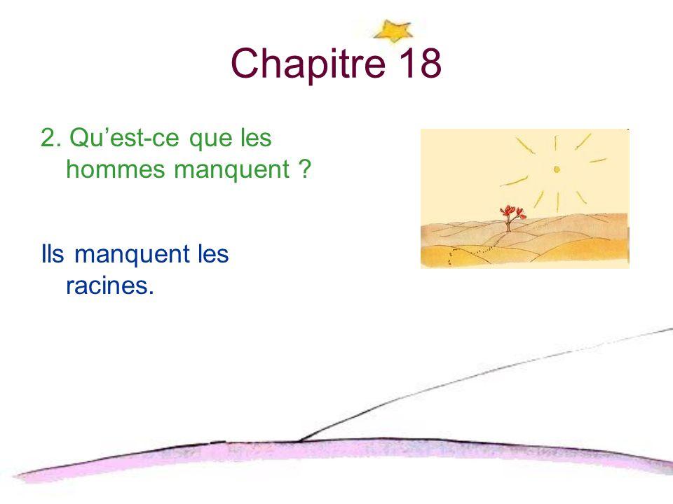 Chapitre 19 1.Comment est-ce que les nouvelles montagnes sont-ils differentes que les montagnes sur la planète du petit prince.