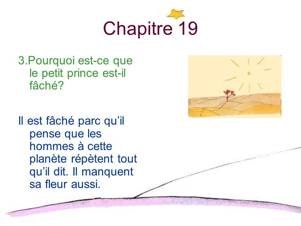 Chapitre 20 1.Quest-ce que le petit prince trouve à la route? Il trouve un jardin.