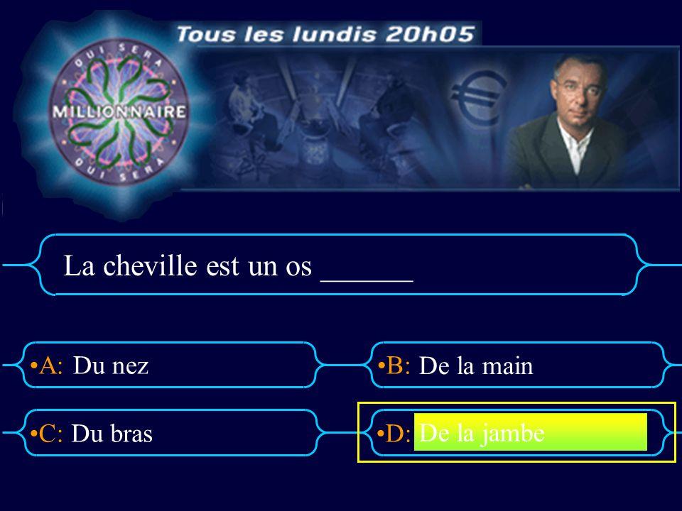 A:B: D:C: La cheville est un os ______ Du nez Du bras De la main De la jambe