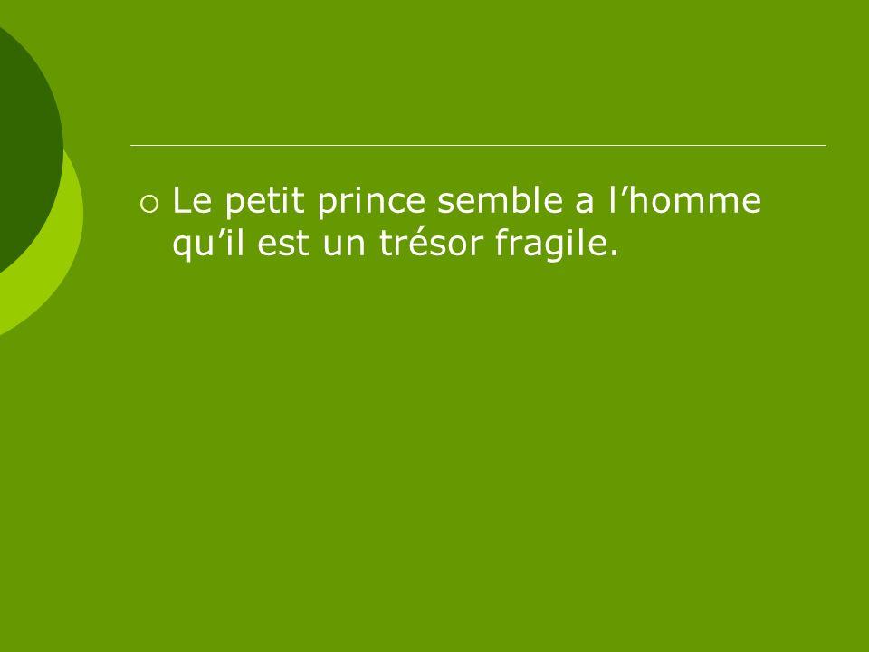 Le petit prince semble a lhomme quil est un trésor fragile.