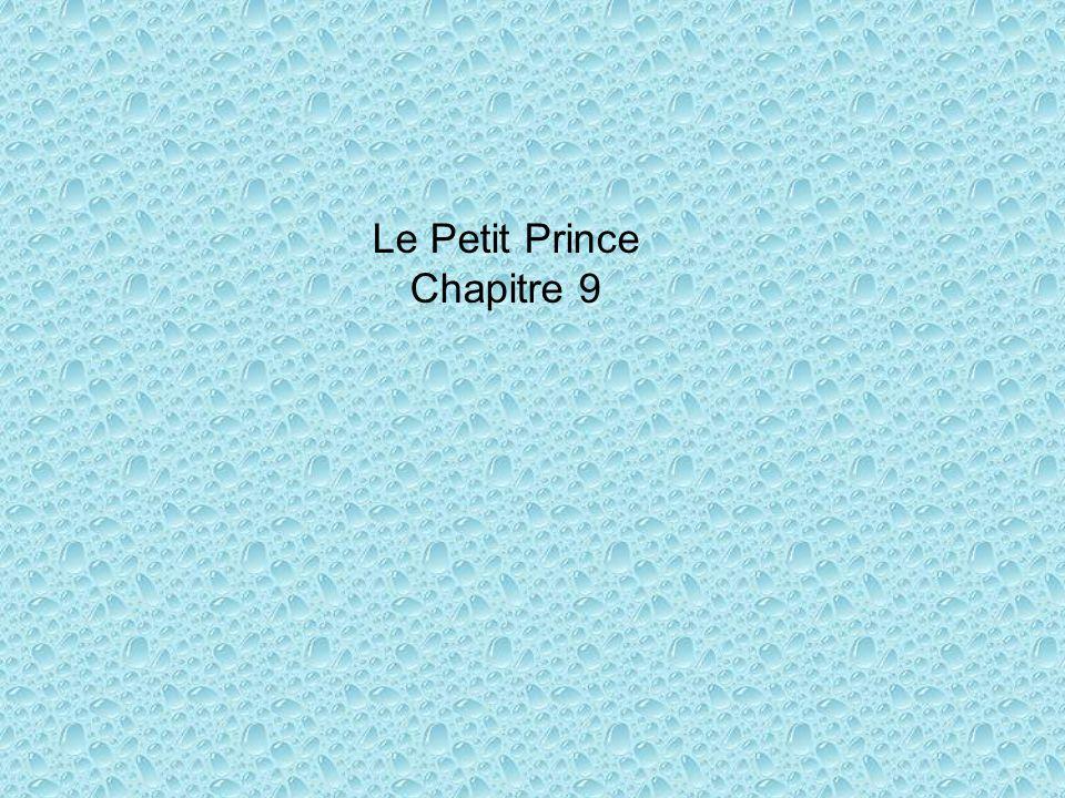 Le Petit Prince Chapitre 9
