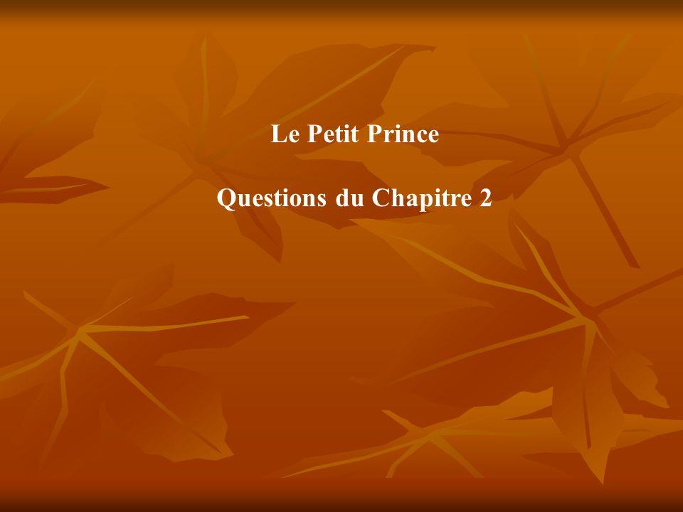 Le Petit Prince Questions du Chapitre 2