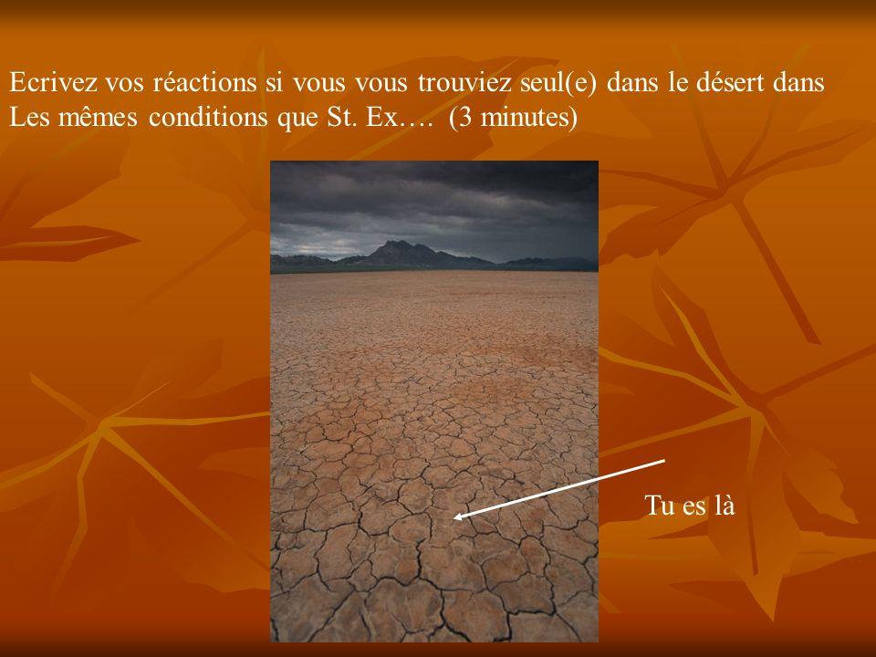 Ecrivez vos réactions si vous vous trouviez seul(e) dans le désert dans Les mêmes conditions que St. Ex…. (3 minutes) Tu es là